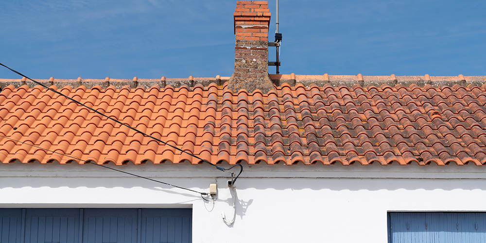 Dach in Mainz - linke Hälfte bereits gereinigt